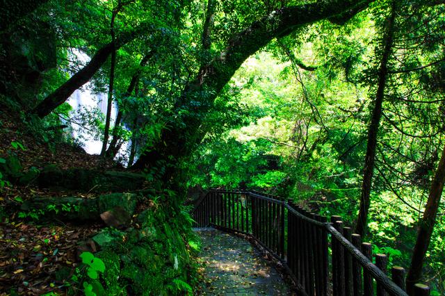 佐世保・潜竜ヶ滝公園を歩く