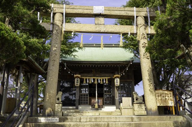 大歳神社の拝殿と鳥居