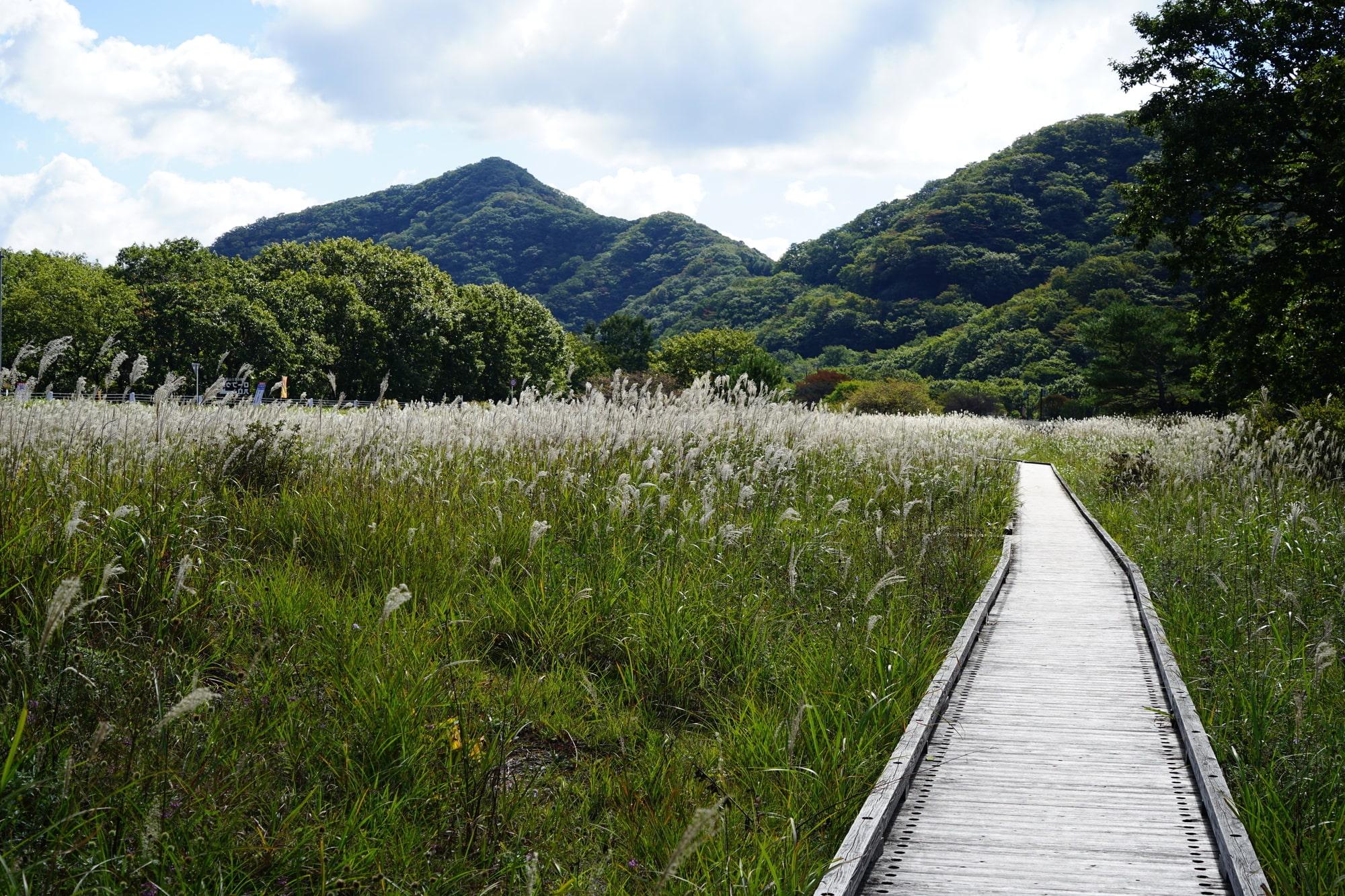 榛名山というのは、高崎市にある上毛三山の1つ