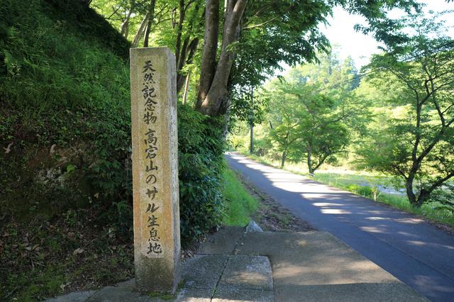 高宕山(千葉)