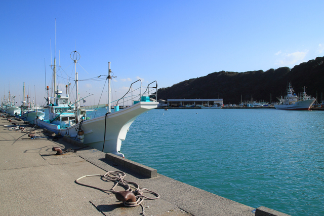 「富浦港」は最近よく訪れるようになった釣りスポット