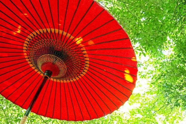 京都の文化を余すことなく体験
