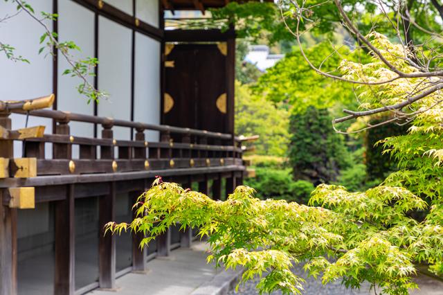 立派な池や木などに囲まれた風格あるお寺