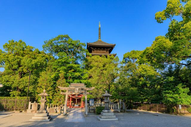 夏休み中もいくつかのお寺に行きました