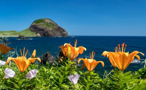 自然がいっぱいの島