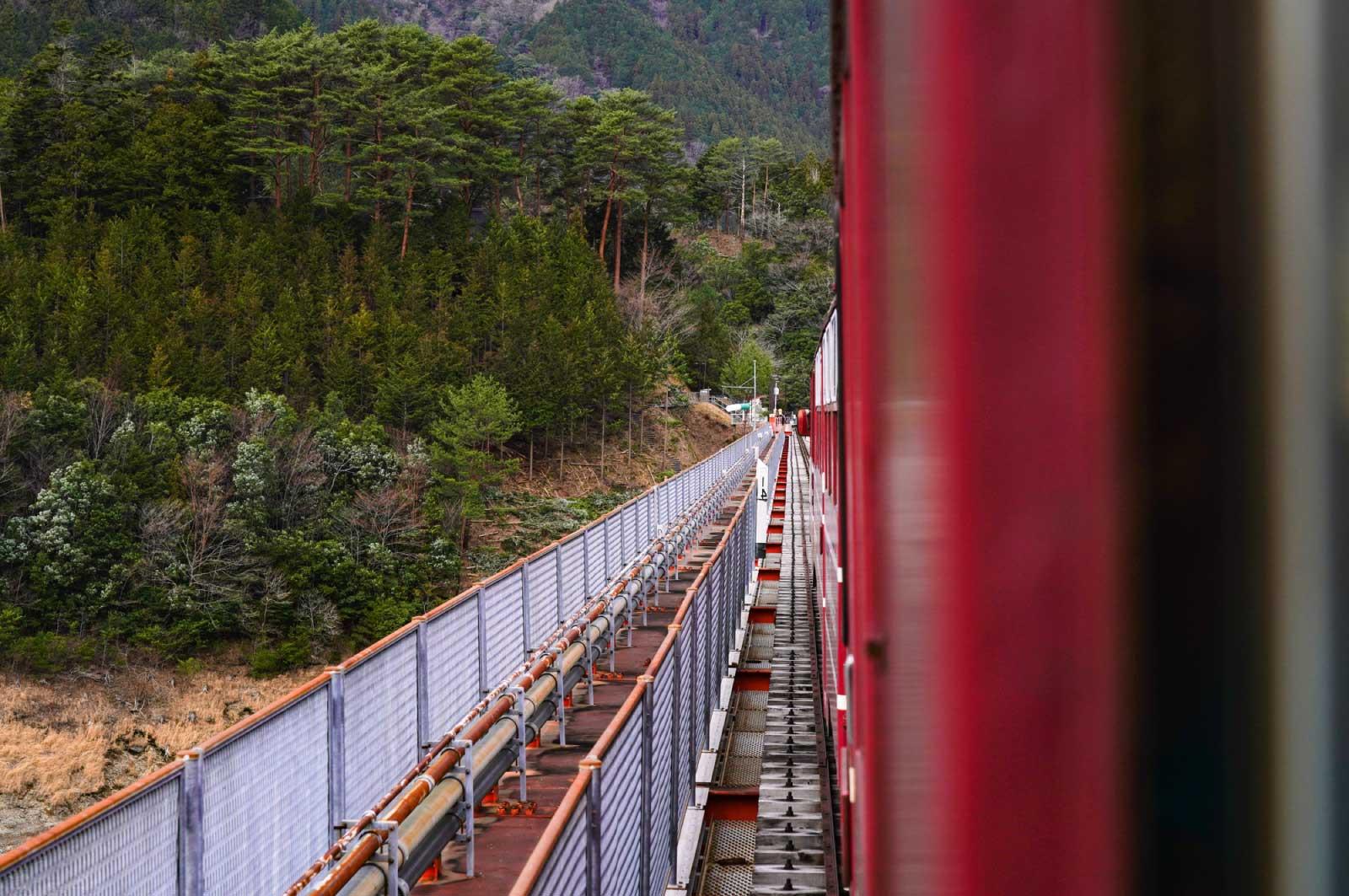渓谷沿いを走るトロッコ列車