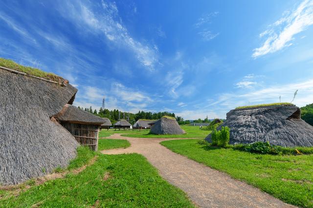 三内丸山遺跡だけが隔離されている不思議な雰囲気