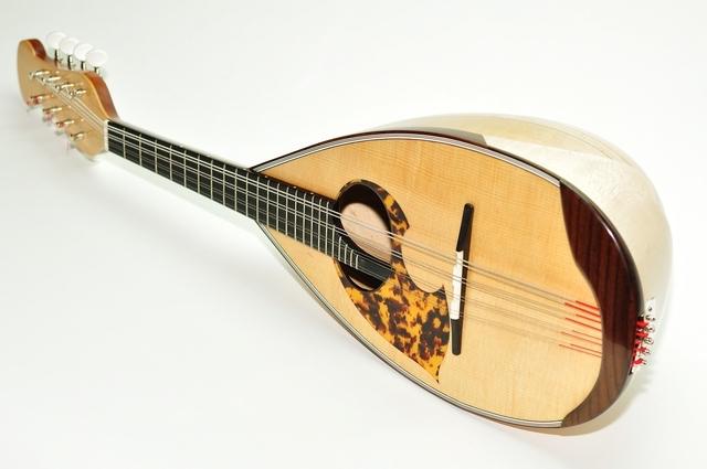 マンドリンは初心者が始めやすい楽器