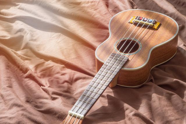 女性にかなりオススメの楽器