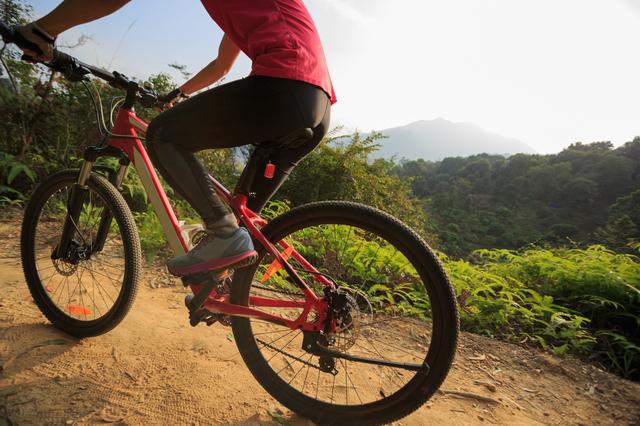 マウンテンバイクで山道を走り抜けるのも気持ちの良いもの