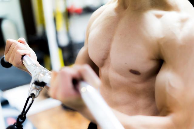 身体を鍛えれば鍛えるほど