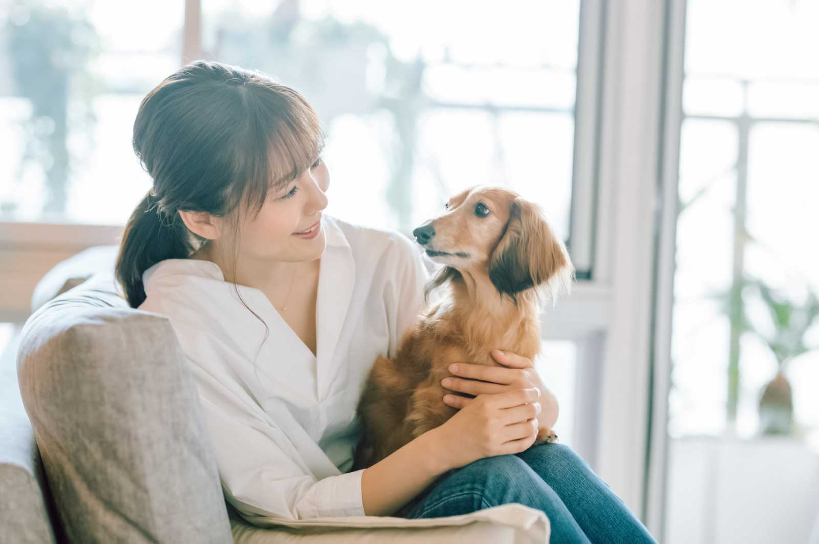 犬を飼う独身女性