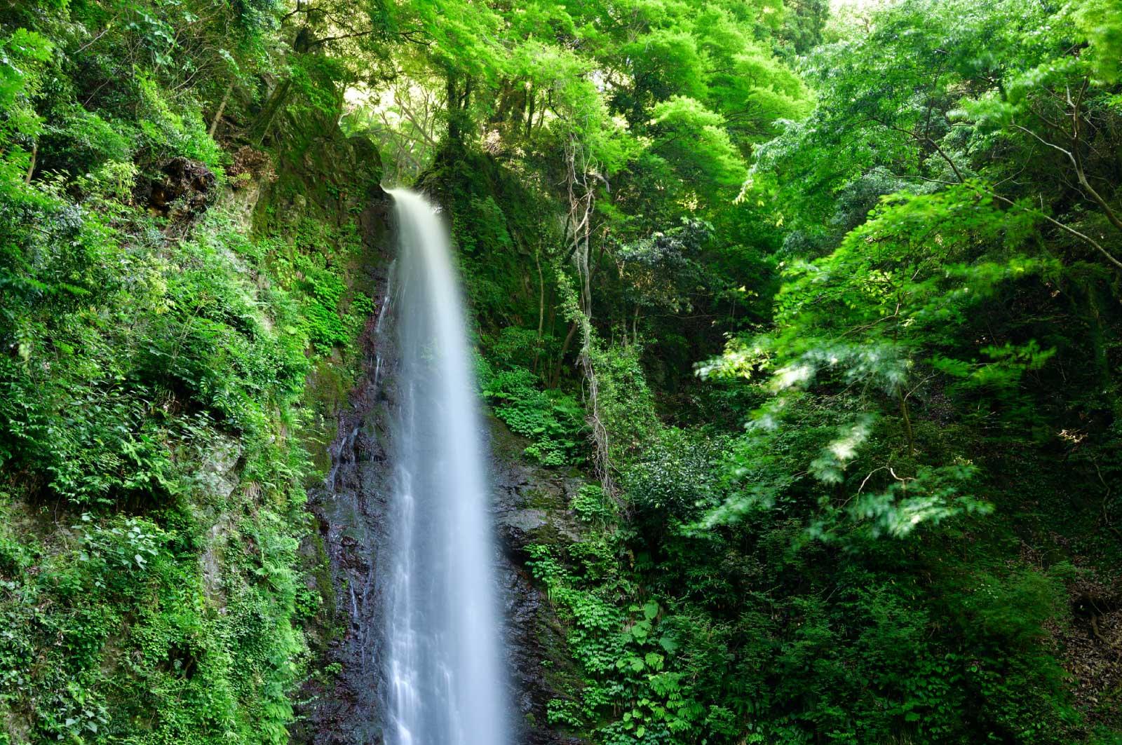 清潔感のある滝