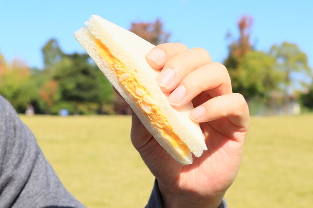 東大阪・花園中央公園で食べるサンドイッチ