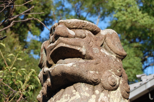 片埜神社の狛犬