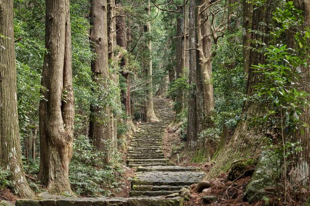 和歌山・熊野古道(那智大門)