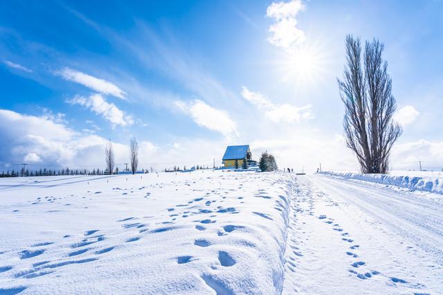 北海道の広大な自然