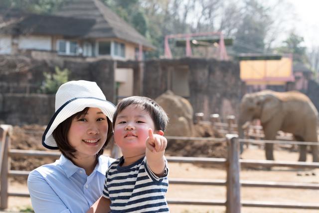 息子と動物園にて