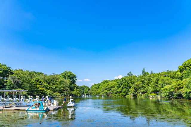 井の頭公園とボート