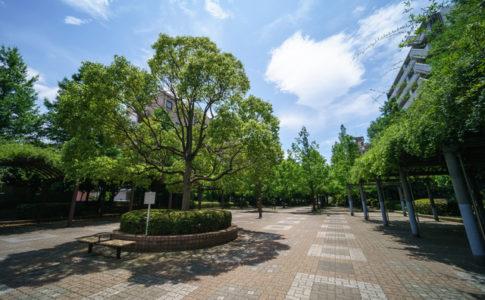 緑豊かな大横河親水公園