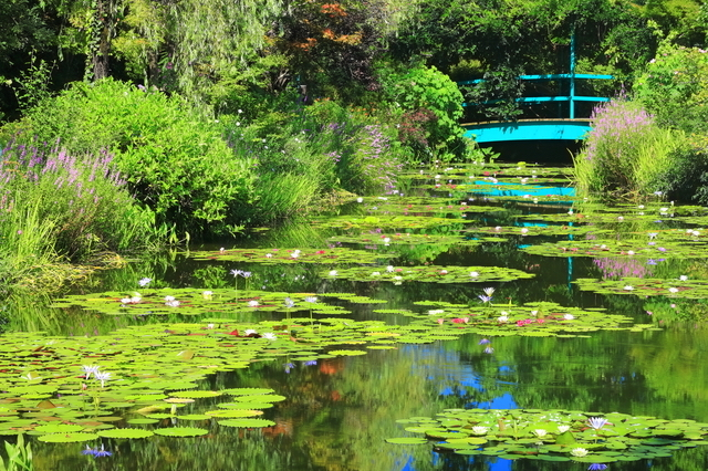 北川村の『モネの庭』