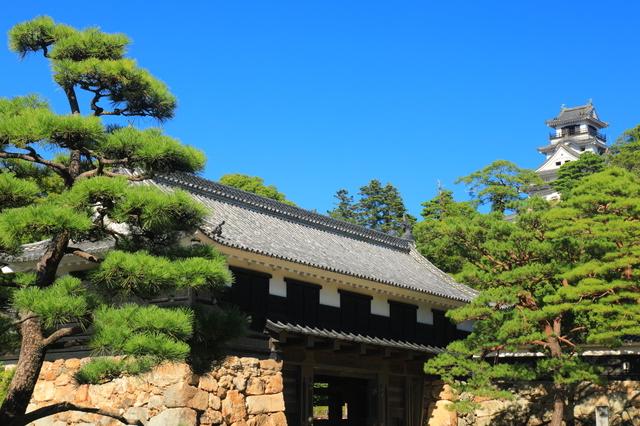 高知城の天守閣と追手門