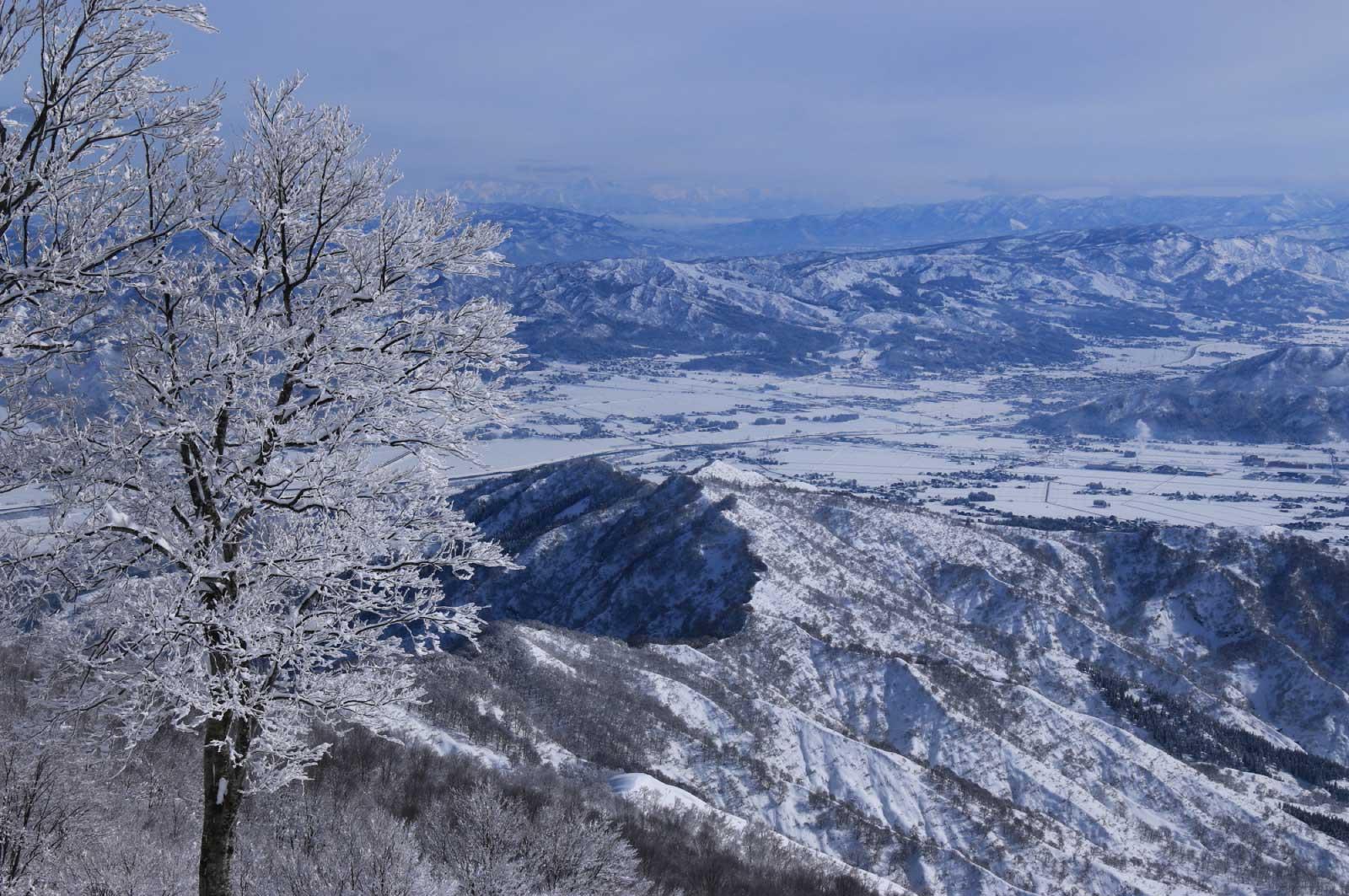 雪景色もまた格別