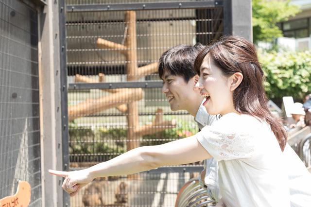 夫婦で動物園を楽しむ
