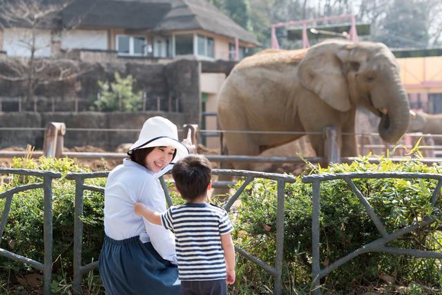 4歳の息子と動物園へ