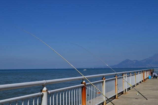 海釣りもできる宇土マリーナ