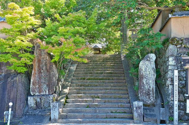 浄瑠璃寺の参道