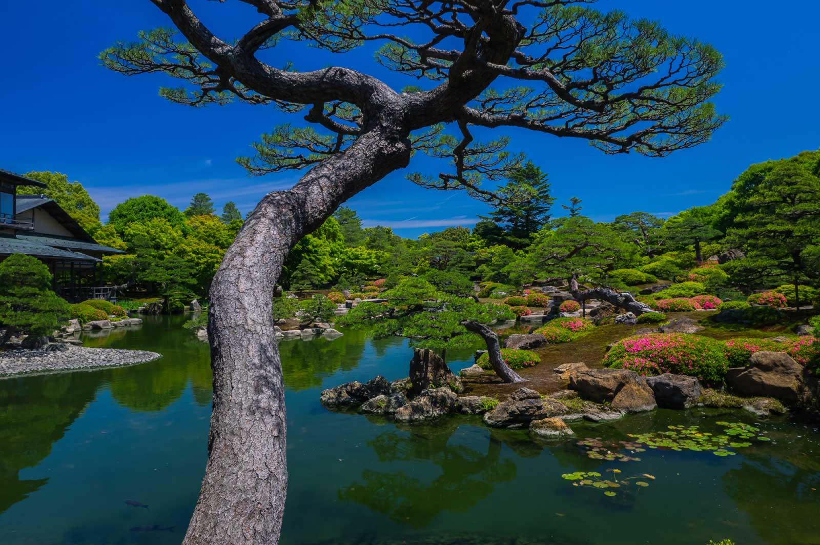 由志園(日本庭園)