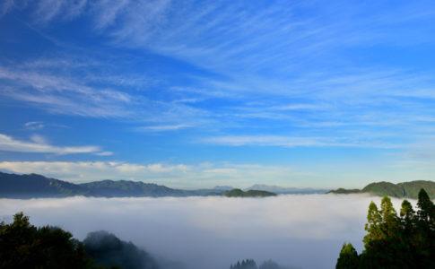 国見ケ丘の雲海