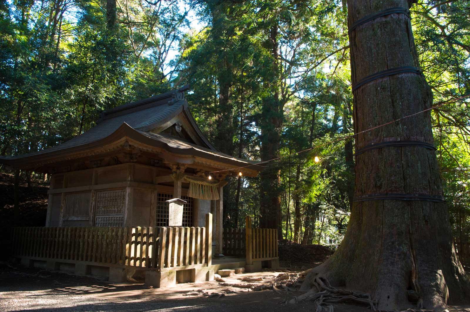 荒立神社(四皇子社)