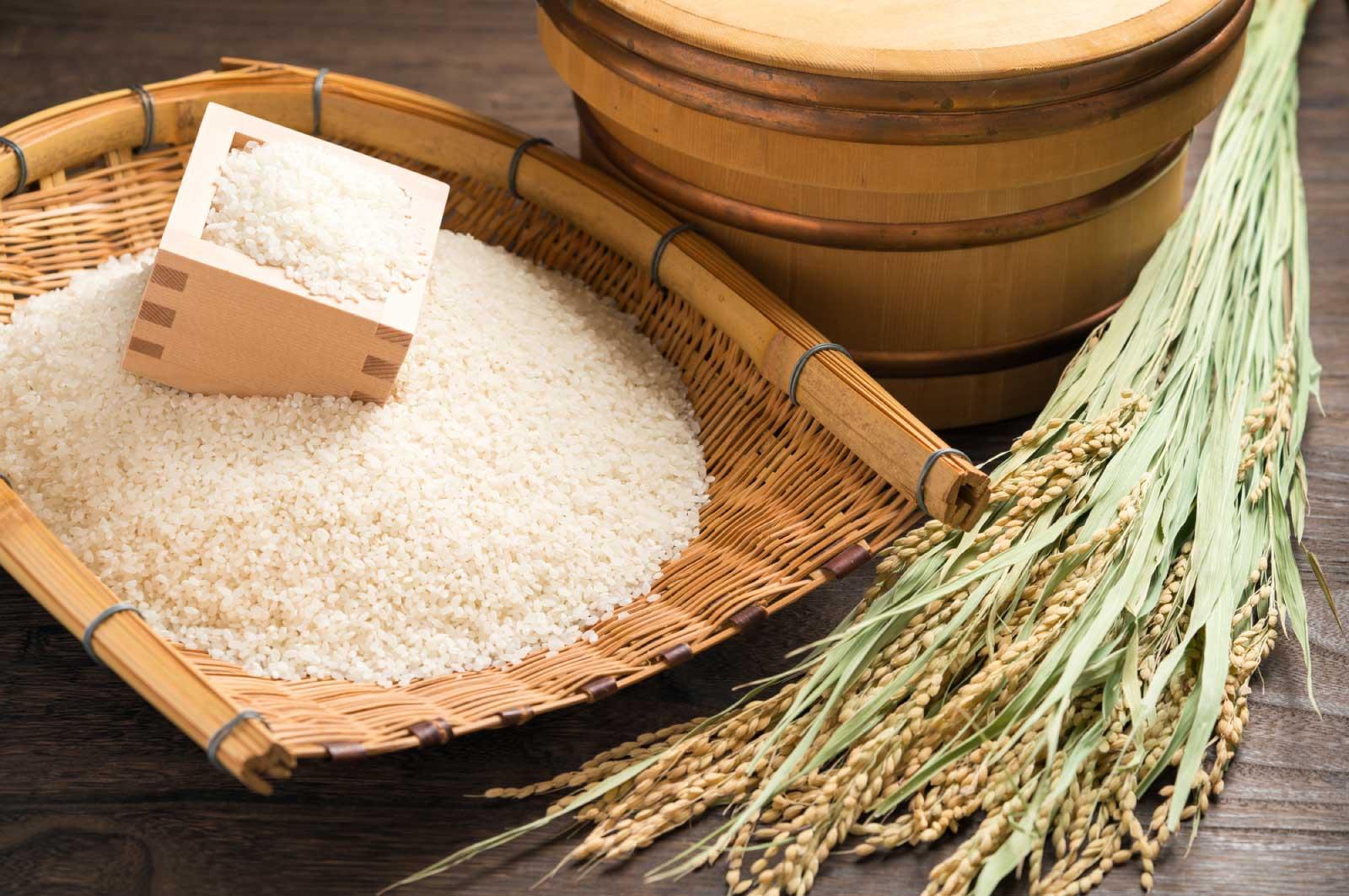 長野のお米の評価は年々高まっている