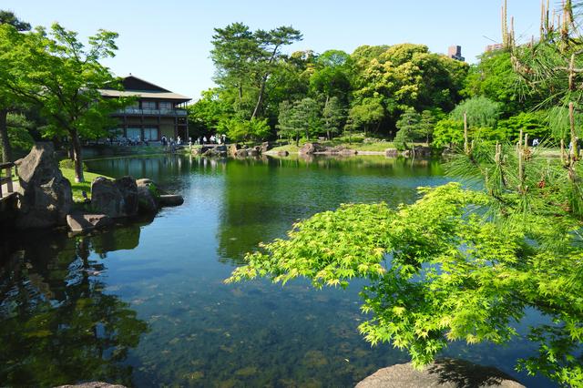 池泉回遊式の日本庭園