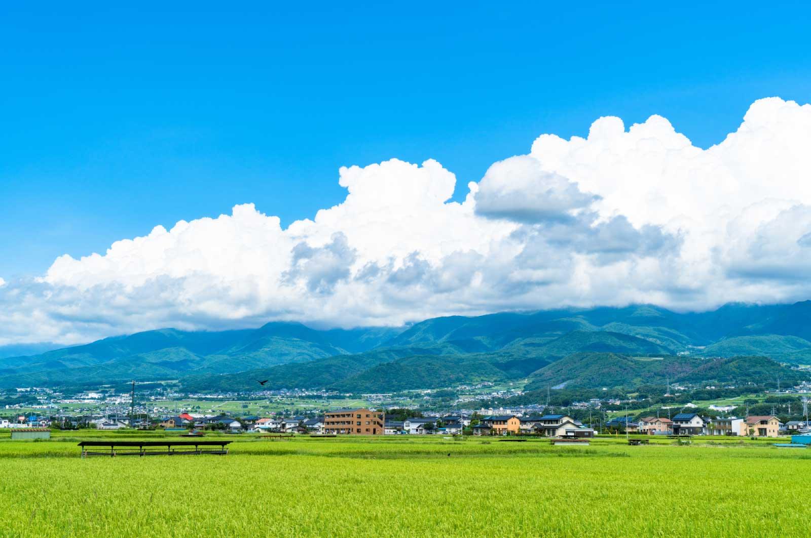 祖父母の家はどちらも長野県にありまして