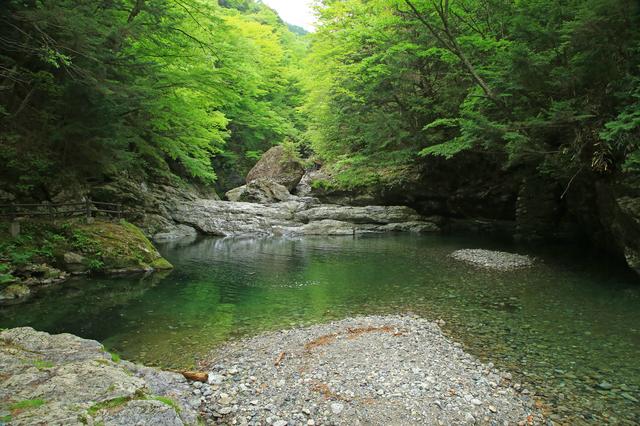 みたらい渓谷は川遊びも出来る