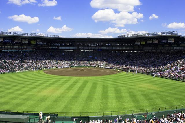 甲子園(高校野球)外野応援席