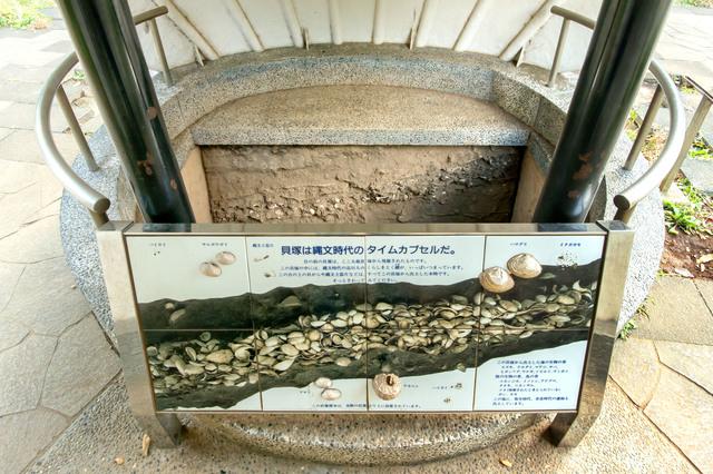 縄文時代の貝塚