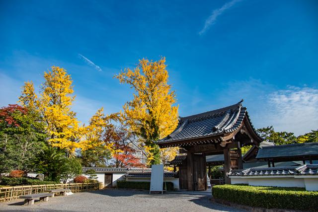 岡崎公園の能楽堂