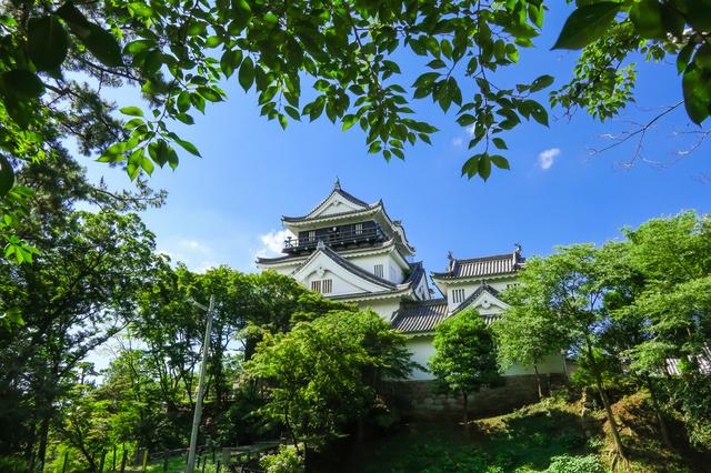 家康が生まれた岡崎に建つ岡崎城