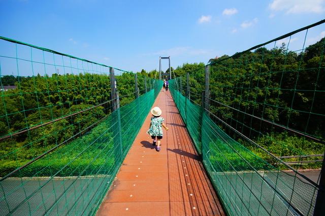 2つのエリアは吊橋でつながれていて