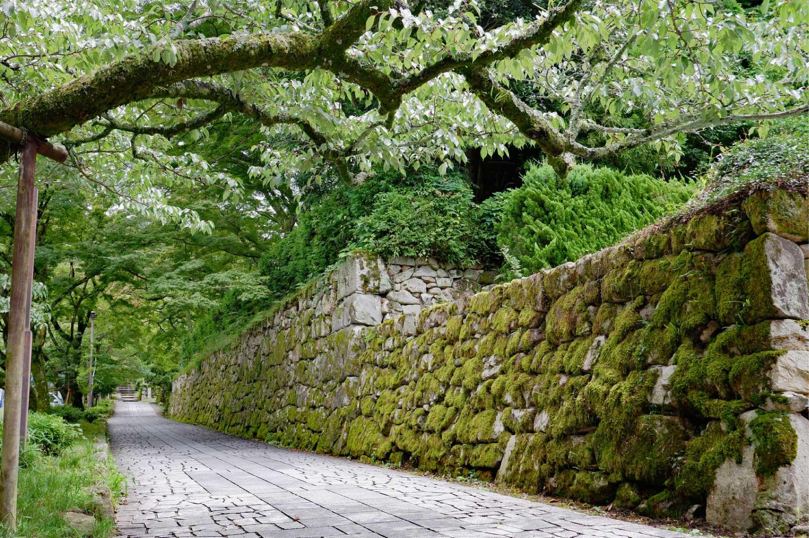坂本城跡(大津)