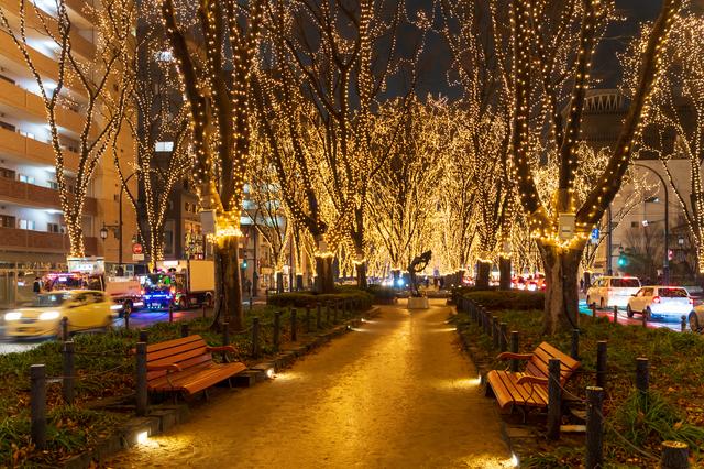 今度、仙台に行く時は、絶対に冬に訪れるようにしたい