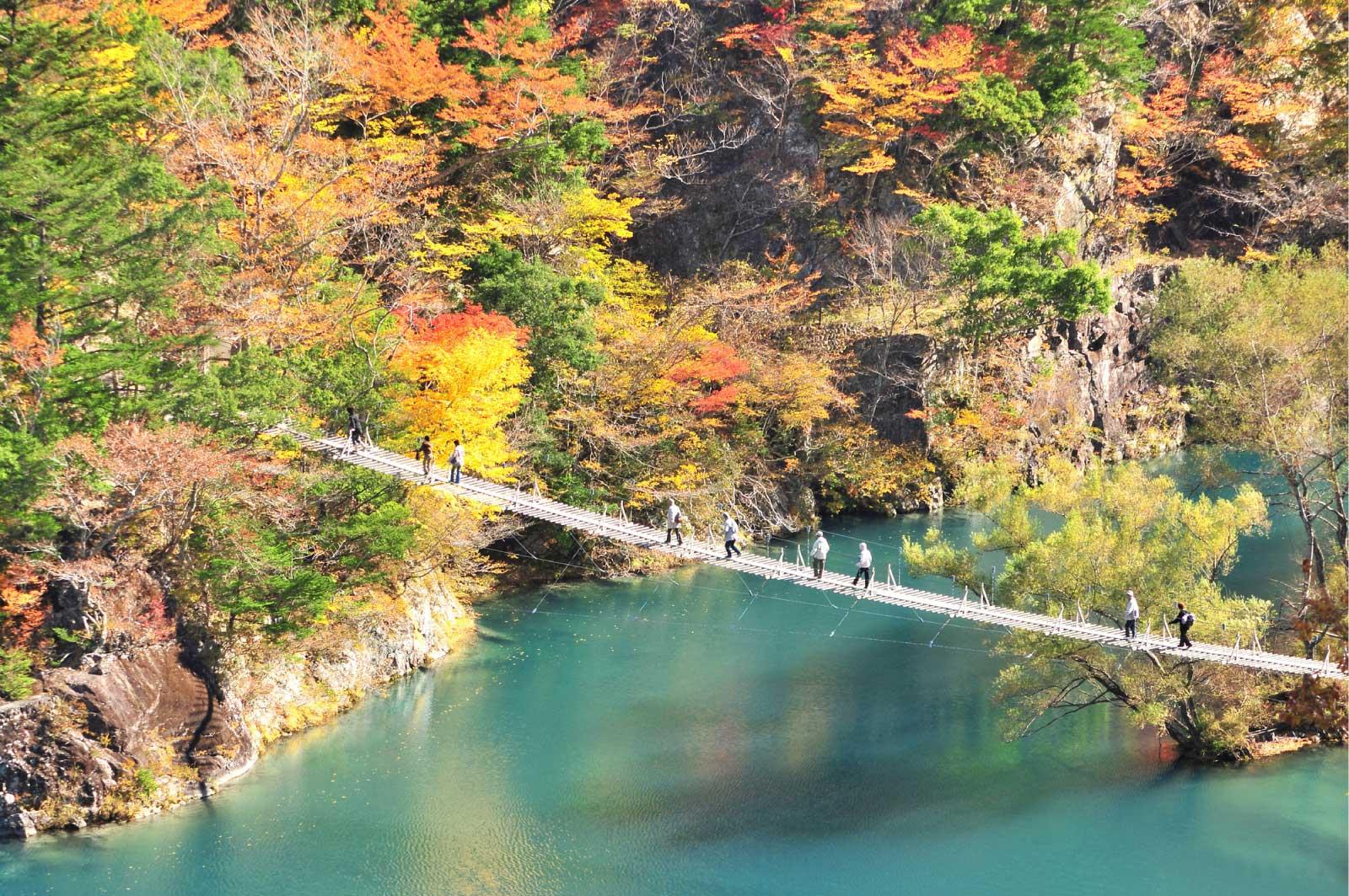 紅葉の時期「夢のつり橋」
