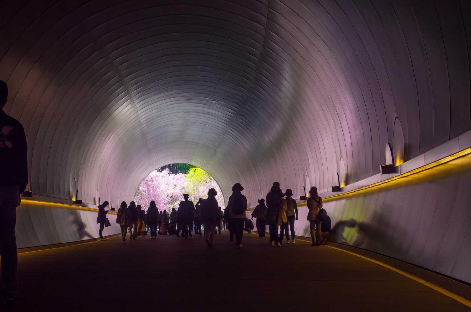 ミホミュージアムのトンネル