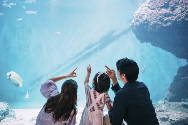 長野にも水族館はある
