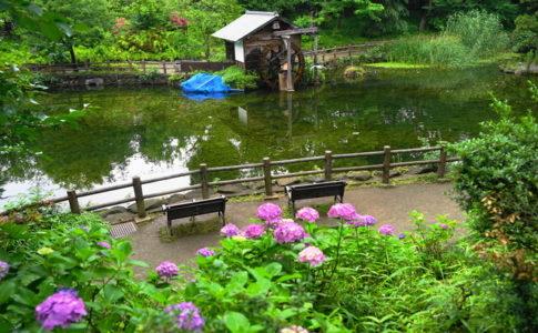 鍋島松濤公園の水車