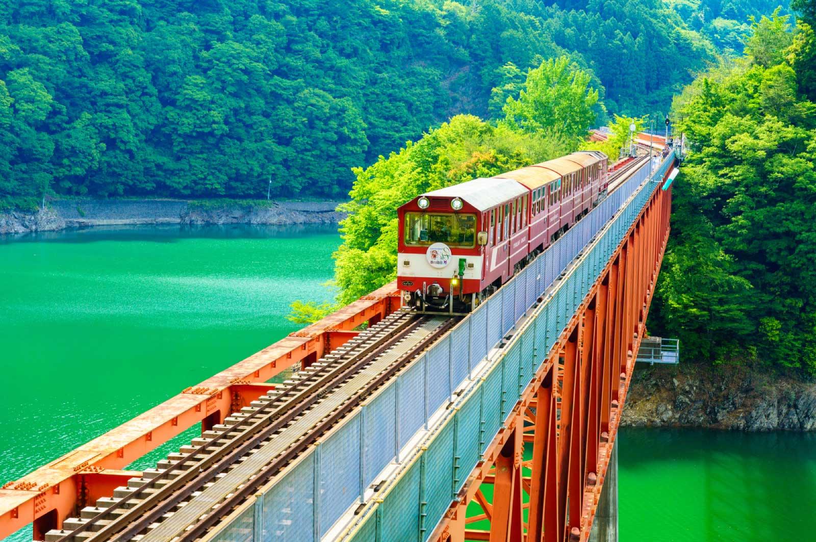 のんびりと静岡を観光でもしようか